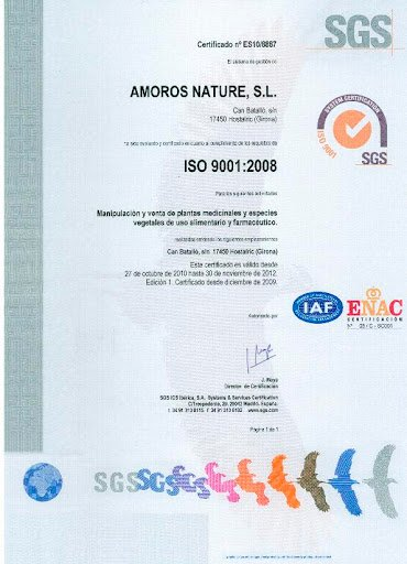 RENOUVELLEMENT ISO 9001:2008
